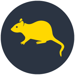 Rodent Control Sandringham