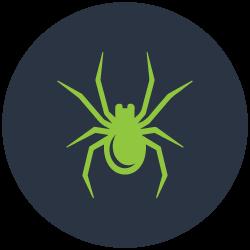 Spider Control Sandringham